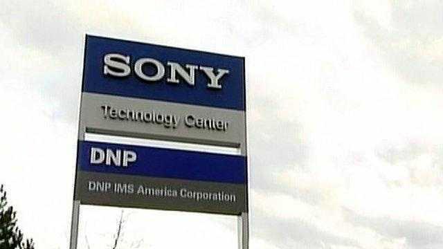 sony-plant - 18246325