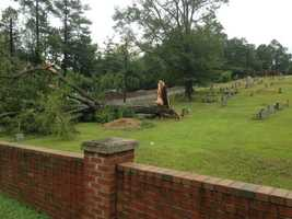 Tree down in cemetery near Cahaba Heights Baptist Church