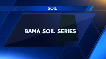 The Bama Soil Series was named the state soil in 1997.