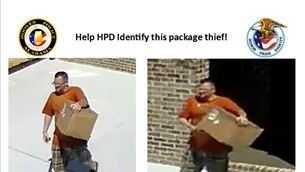 Hoover package thief.jpg