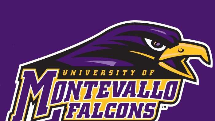 Montevallo_Falcons_purple logo.jpg