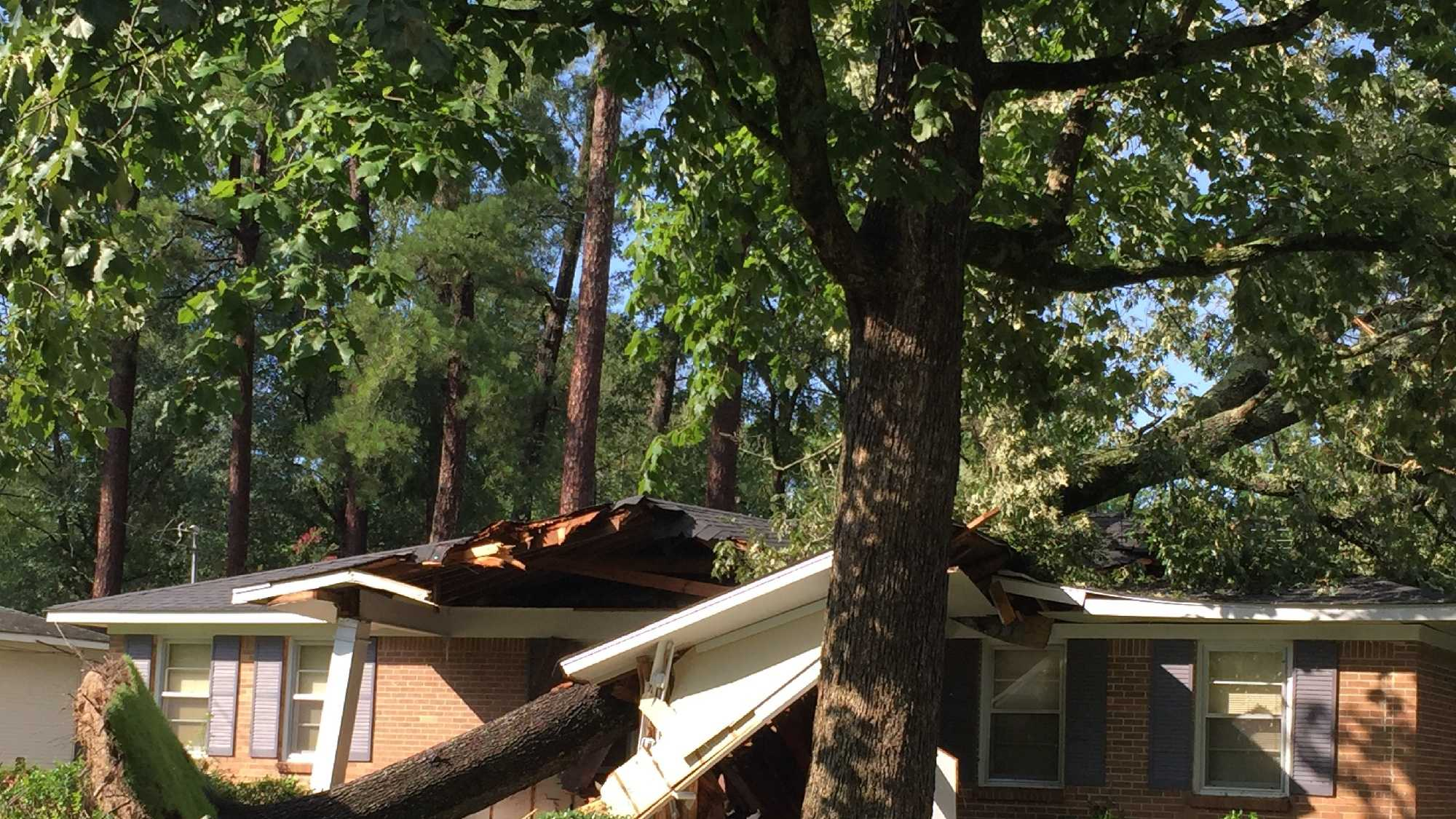 Etowah County Damage.jpg