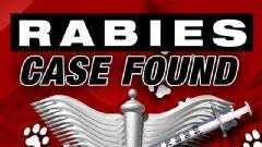 Rabies Case