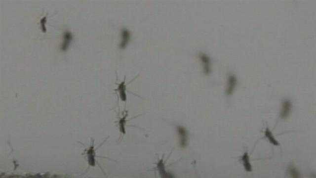 WXII 12's Rob Wu talks about ways to protect yourself and your family from the  deadly virus.