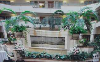 This building even had big tropical plants and others in the background of this wedding reception area. Think out of the box when planning your wedding. Maybe some plants are in the buildings you are going to use already then add to them. (Beverly's of Midway Flowers and Gifts)
