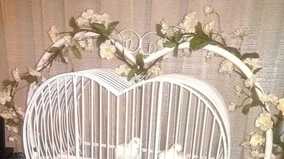 The Carolina Weddings Show