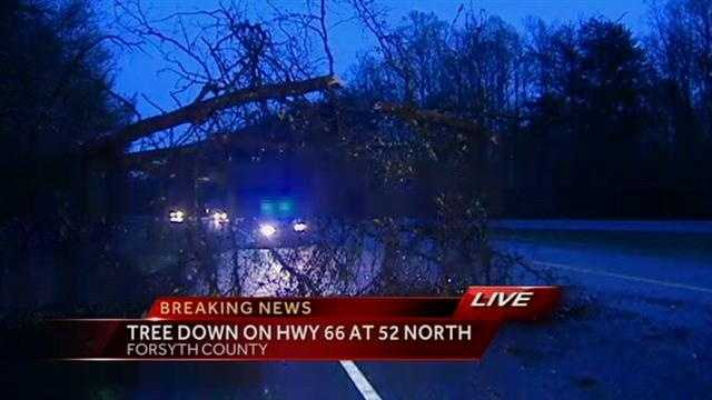 Trees down due to severe weather in Forsyth County
