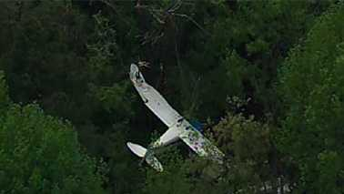 Small plane crashes into trees