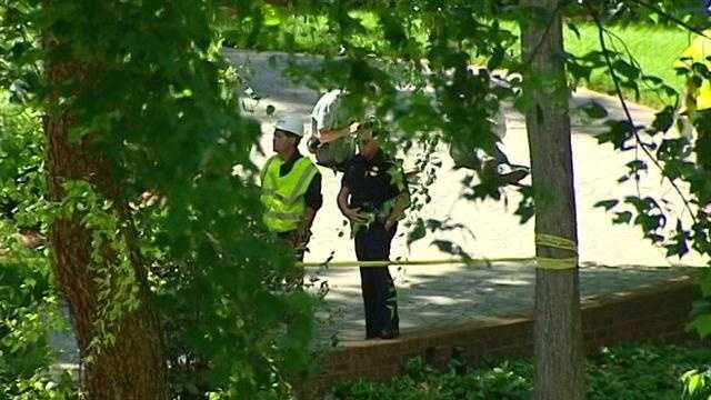 Tree trimmer falls to death in Winston-Salem