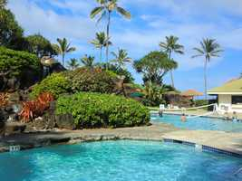 Maui hotel pools have something for everyone. Volleyball in the water!