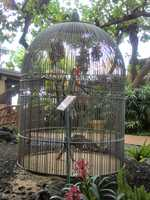 The parrot's cage seems to have a white cockatoo that looks like Baretta's Bird from the old detective series.