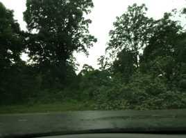 Tree down in Winston-Salem (thanks, Veronica White)