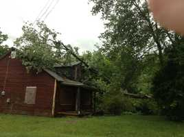 Tree down on Walker Road (thanks, Veronica White)