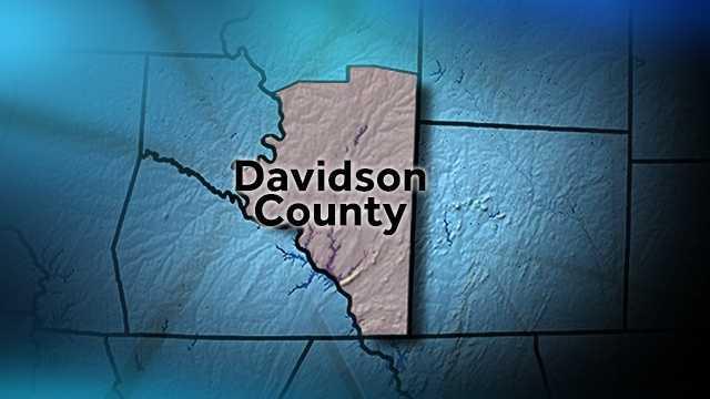 Davidson County map