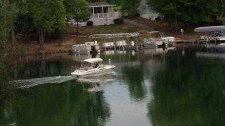 Belews Lake photo May 6