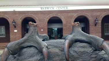Seahawk statue stolen from UNC Wilmington