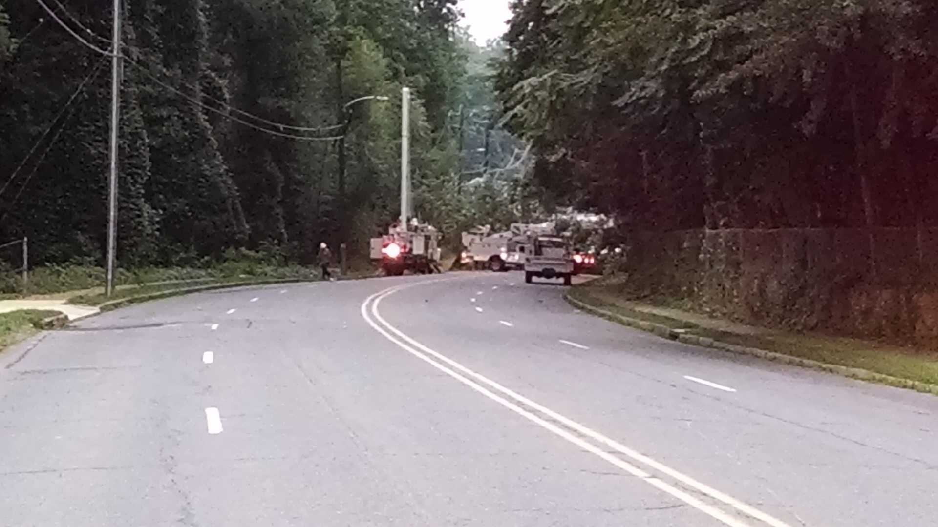 Tree, power lines fall on Reynolda Road