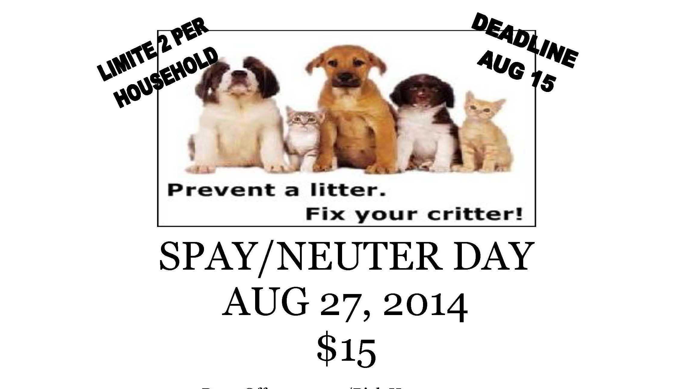 spay flyer.jpg