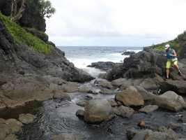 Beautiful ocean and other areas to go hiking and walking.