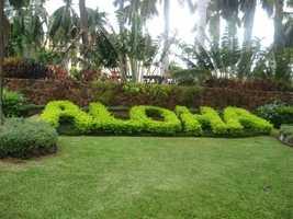 Hawaii greets you for your wedding and/or honeymoon. Aloha!