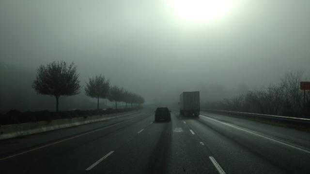 Fog (photo.JPG) - 30286191