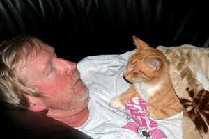 This is creative services director Jeff and his cat Fred, who was helping him recuperate.