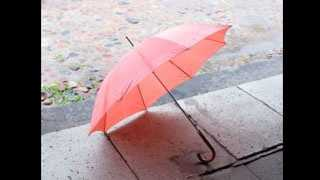 umbrella rain generic