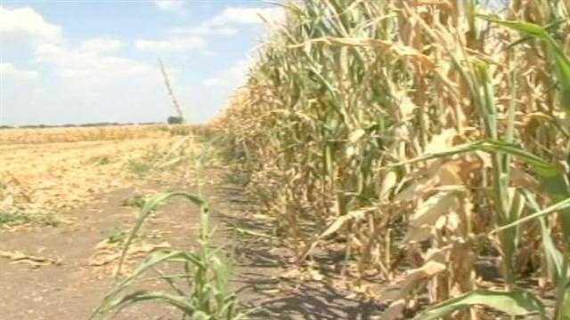Farmers talk drought
