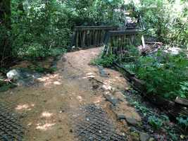 Citing heavy damage due to flood waters, the South Carolina Botanical Gardens closed for the first time in history over the weekend.
