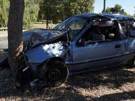 The second most common fatal wrecks involved colliding with trees.