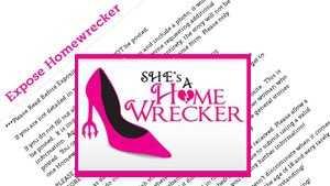 Shesahomewrecker