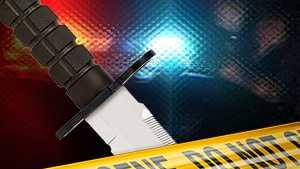 Fatal Stabbing on Old Denver Road in Anderson County