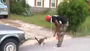 cat-tossing.jpg
