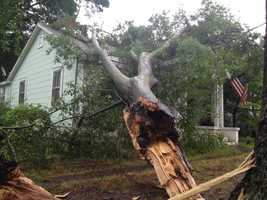 Downed trees caused damage after a line of heavy rain and thunderstorms moved through the Upstate Thursday morning. Trees were reported down at various locations across the Upstate including Simmons Street and Woodrow Street in Laurens. Click through to see more pictures of the damage.
