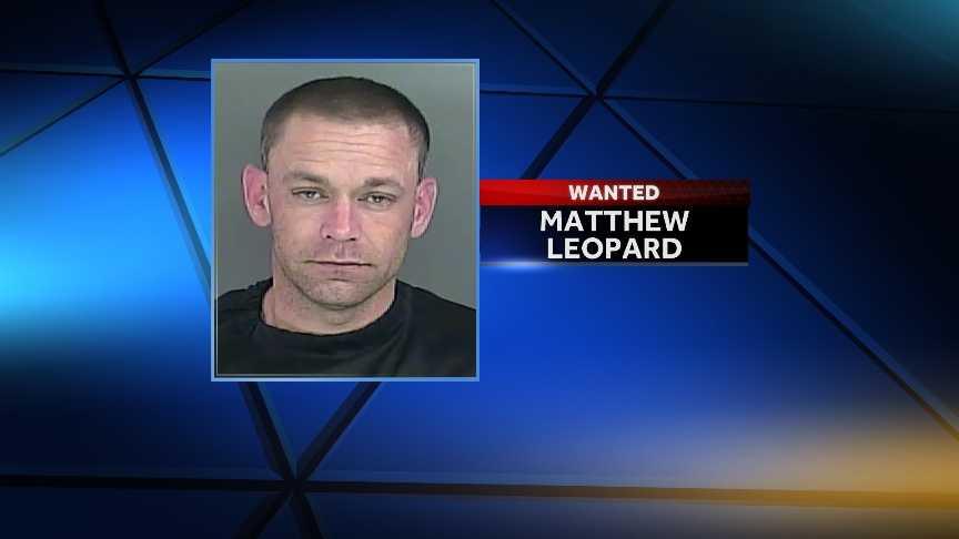 Matthew Leopard
