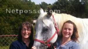 Odie the missing Appaloosa