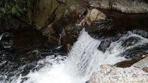Laurel-Fork-Falls--Adam-Caudill.jpg