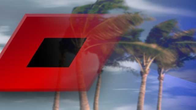 Tropical storm (palm)