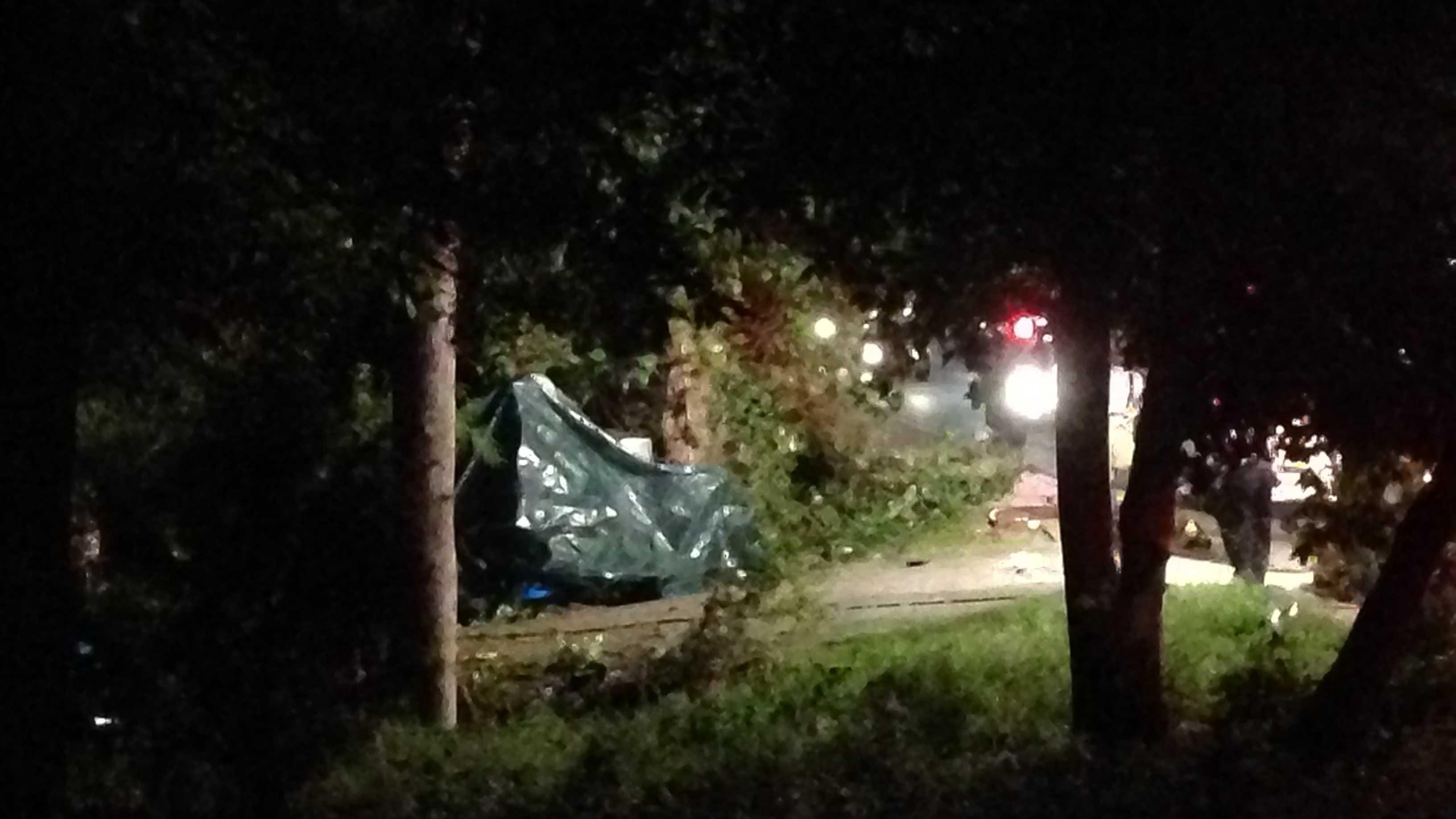 Pelham Road Fatal