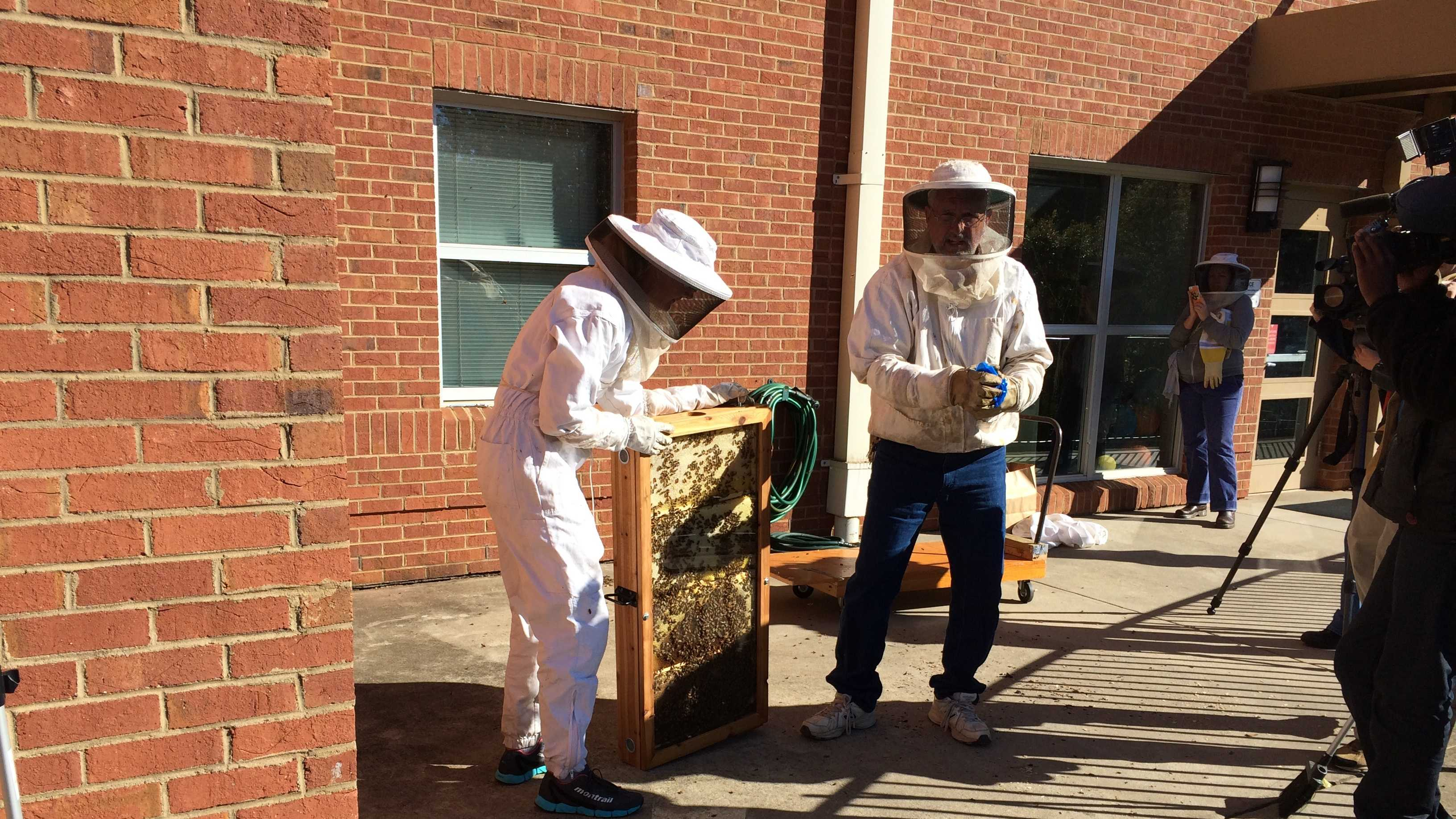 Beekeepers start installing the bee hive at the school.
