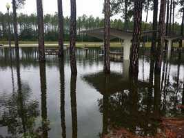 Fort Stewart, Georgia from Carolyn Warner Barrs
