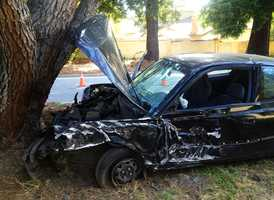 A man crashed head-on into a tree on Bay Drive and Meder Street in Santa Cruz on July 11. Emergency crews said they found the driver unconscious and he was airlifted to a trauma center with life threatening injuries.