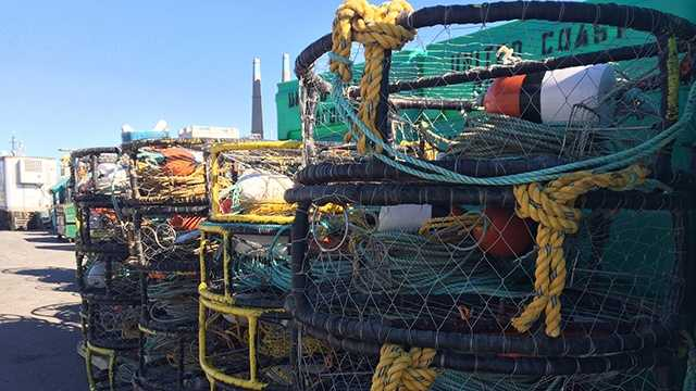 Crab fishermen expect opener soon