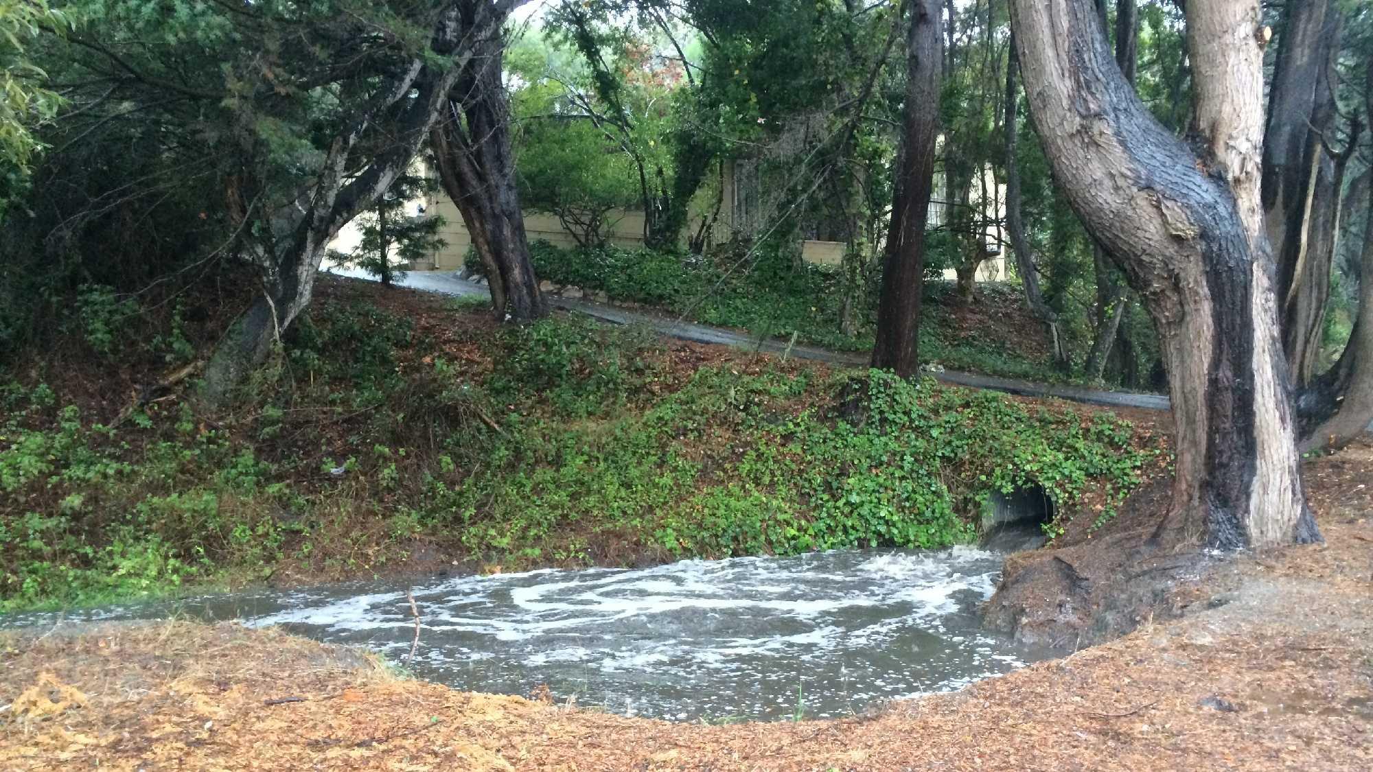 Storm water.JPG