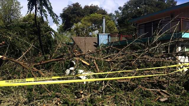 Storms knock down trees, power lines in Santa Cruz County