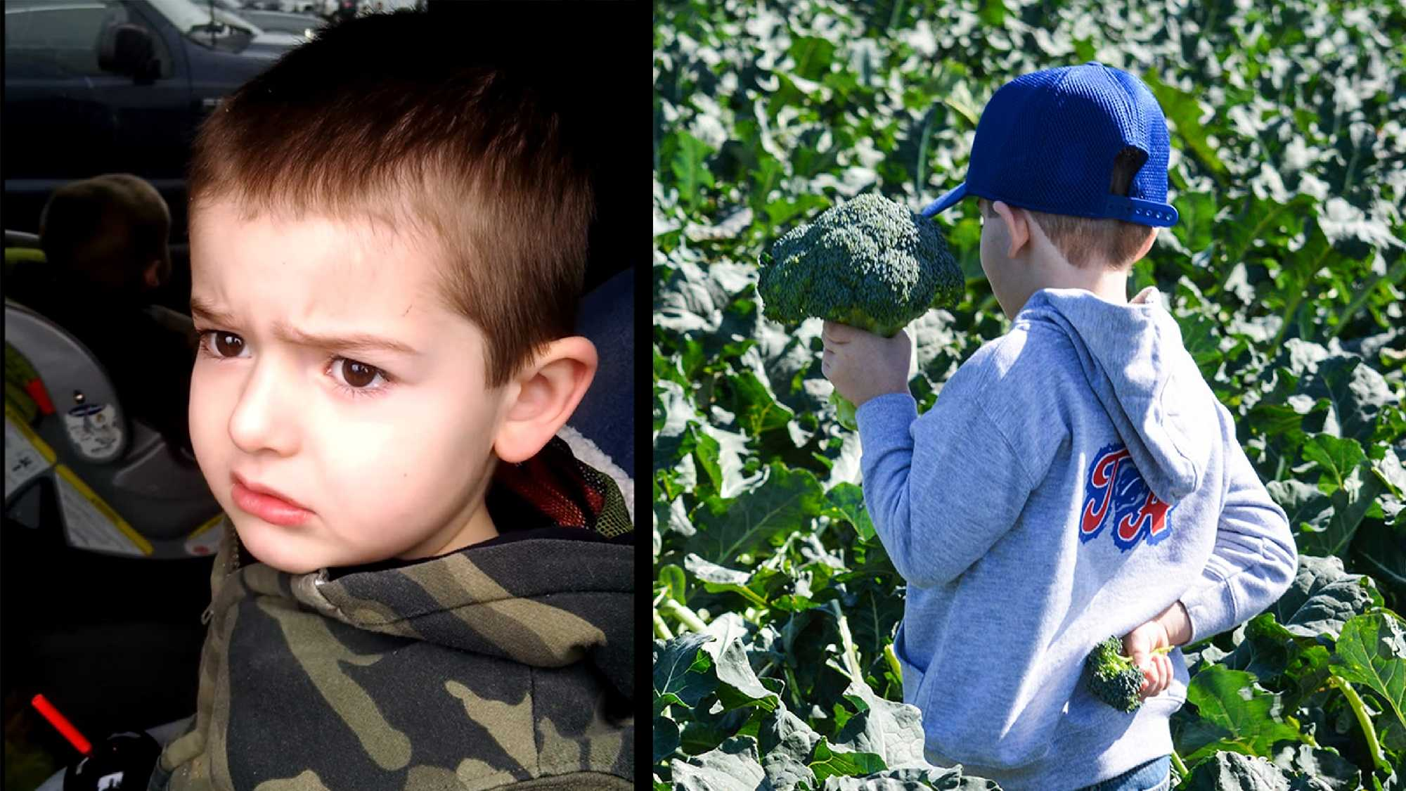 Max when he arrived at the circus, left, and Max on the Salinas broccoli farm, right.