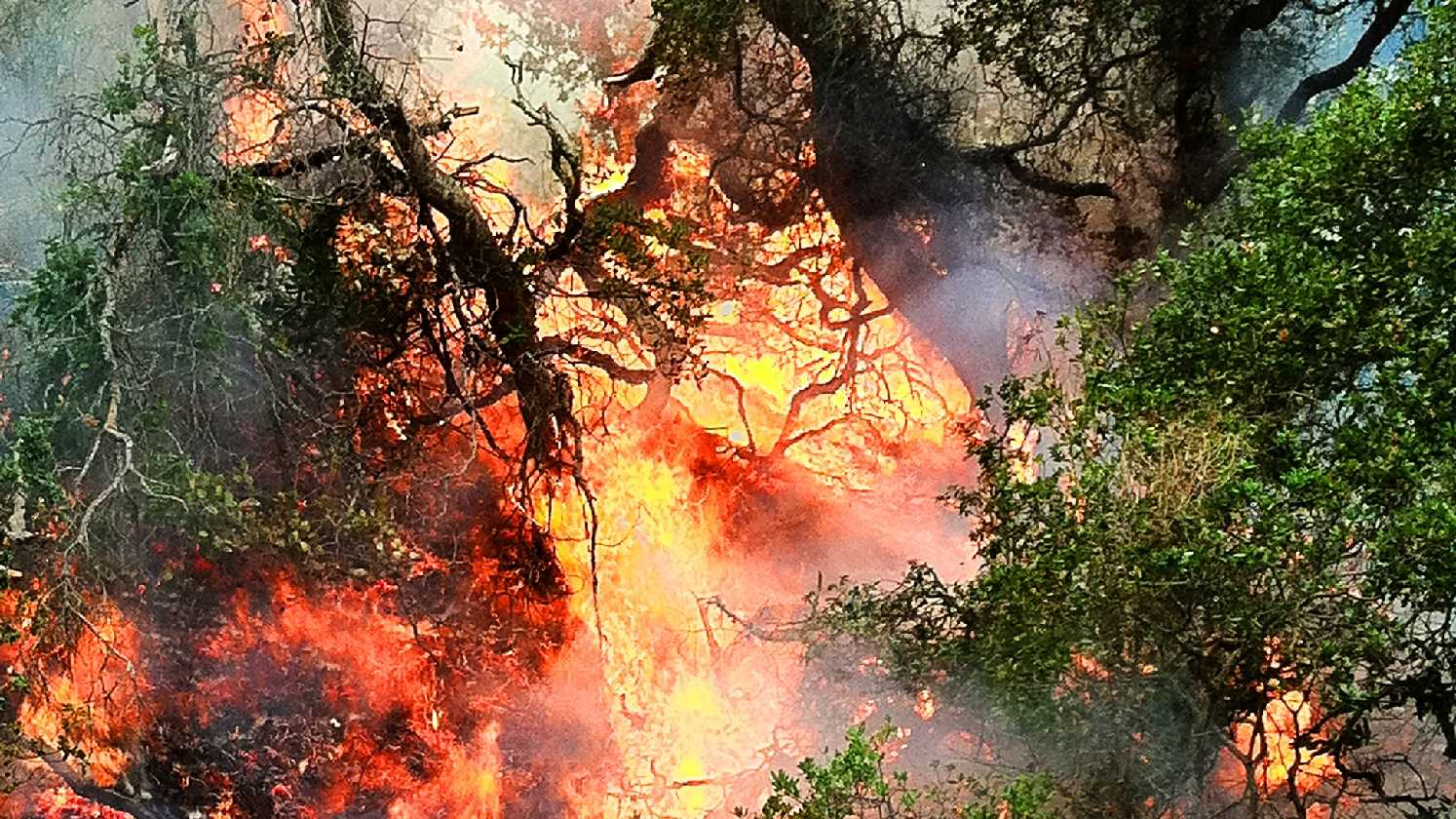 Big Sur Pfeiffer Fire