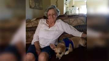 Destiny for Dogs, Inc. also helps seniors keep their dogs by giving them various services. For more information go to the website: http://www.destinyfordogs.com