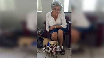 Joey, an autistic dog, was adopted Tuesday by Sonji while she was visiting a veterinarian office.