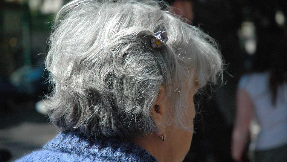 Senior citizen, seniors, elderly
